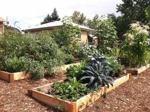 Can't wait for summer's garden!